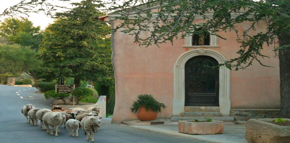 Grimaud : chapelle saint-roch