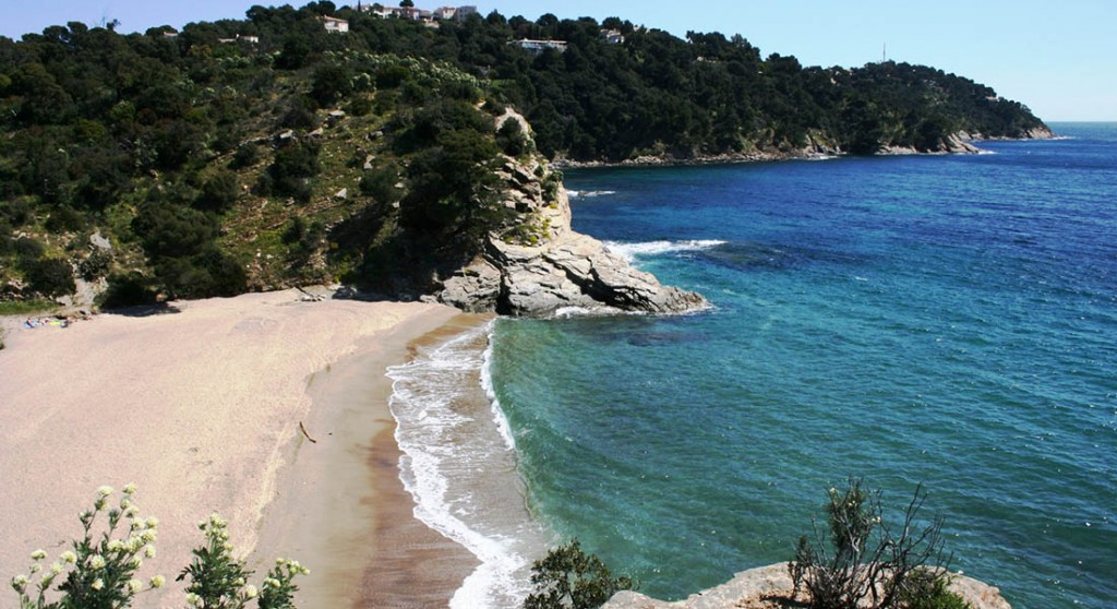 girl-courtney-cavalaire-sur-mer-nude-beach-stocking-sex