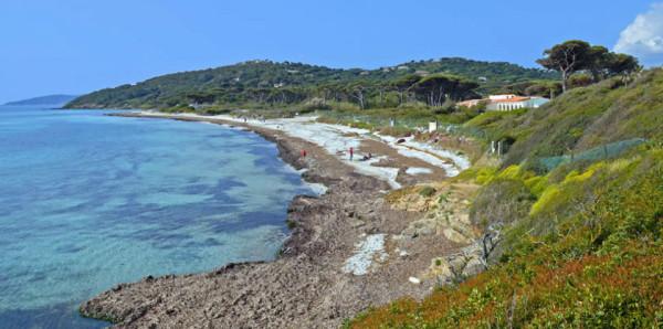 Plage des Salins Source : Golfe de Saint-Tropez Tourisme